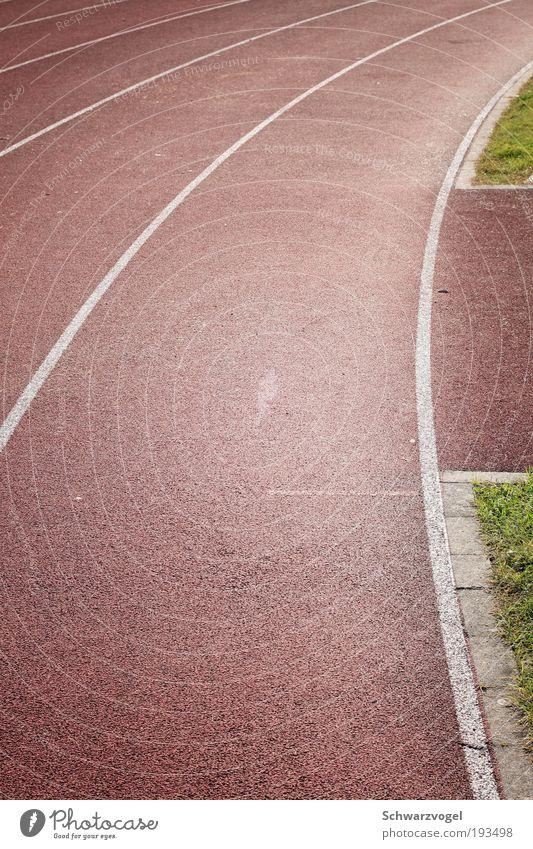 Kurvenabschnittsauschnitt mit Grün grün rot ruhig Sport Leben Bewegung laufen Kunststoff Übergewicht kämpfen Rennbahn Stadion Ausdauer Joggen fleißig diszipliniert
