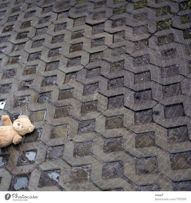 verloren. Verkehrswege Straße Wege & Pfade Spielzeug Teddybär Stofftiere Stein Beton Zeichen Linie Streifen Spielen Traurigkeit weinen bedrohlich dreckig