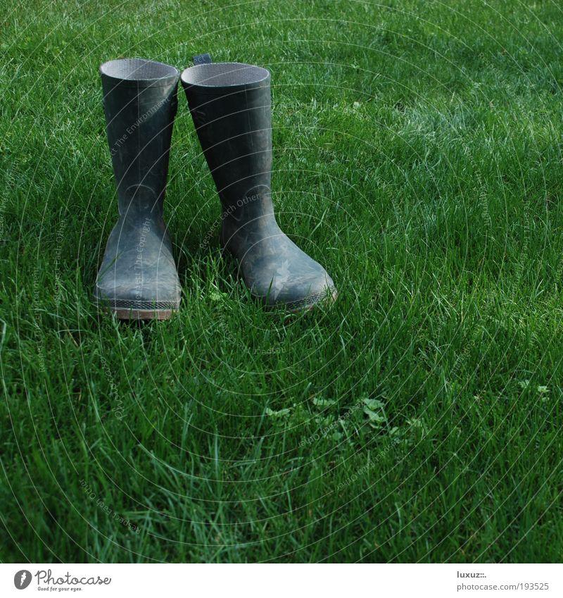 Nordsee-Pumps grün Erholung Wiese Arbeit & Erwerbstätigkeit Umwelt Garten Frühling Gebäude Schuhe Rasen Baustelle Landwirtschaft Stiefel Renovieren Arbeiter