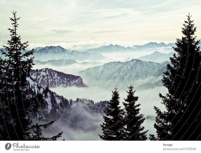 conspectus hannibalis Natur schön Baum Ferien & Urlaub & Reisen Wolken Winter Wald Erholung dunkel Schnee Berge u. Gebirge Landschaft Umwelt Eis Nebel