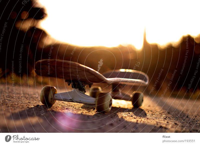 Back to the street (reload) Schönes Wetter Skateboard Abenddämmerung Funsport Blendenfleck Gegenlicht Objektfotografie