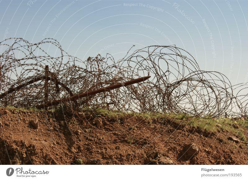 Kein durchkommen Himmel Ferien & Urlaub & Reisen Ferne Freiheit Gras Angst Erde Ausflug gefährlich Sicherheit Frieden Unendlichkeit Schutz beobachten gruselig