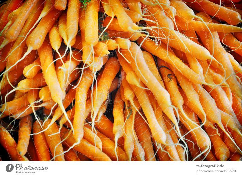 Osterhasens Lieblingstraum Lebensmittel Gemüse Möhre Marktstand Gemüsehändler Wochenmarkt Vitamin Vitamin A Wurzelgemüse Gesundheit Blick Ernährung Bioprodukte