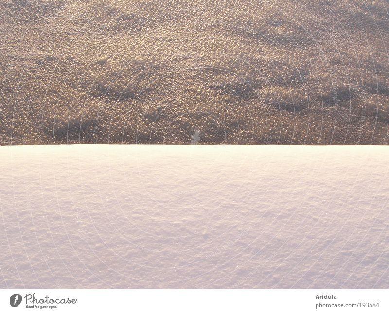 hart und zart Natur weiß blau Winter ruhig kalt Erholung See Eis rosa weich bedrohlich gefroren frieren harmonisch Glätte