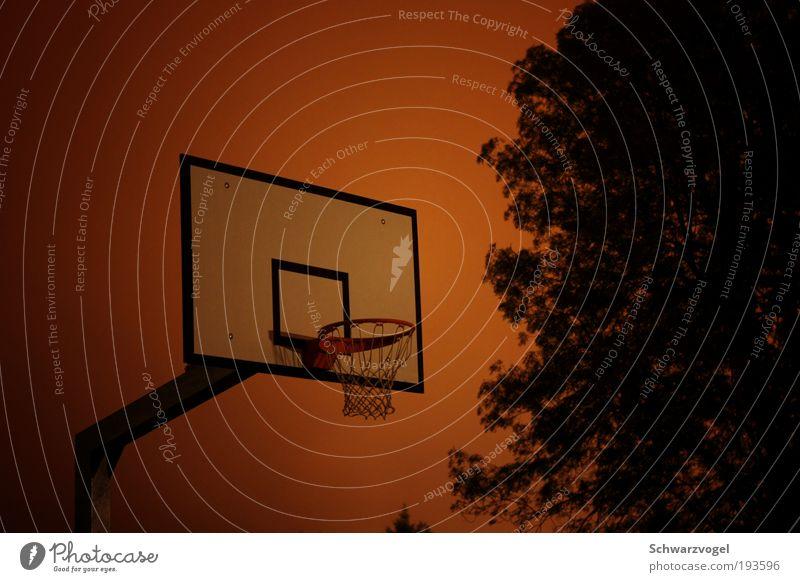 midnight rebound Freude Sport Spielen Bewegung Stimmung Zusammensein Freizeit & Hobby laufen Geschwindigkeit fangen Stress anstrengen Nachthimmel Basketball