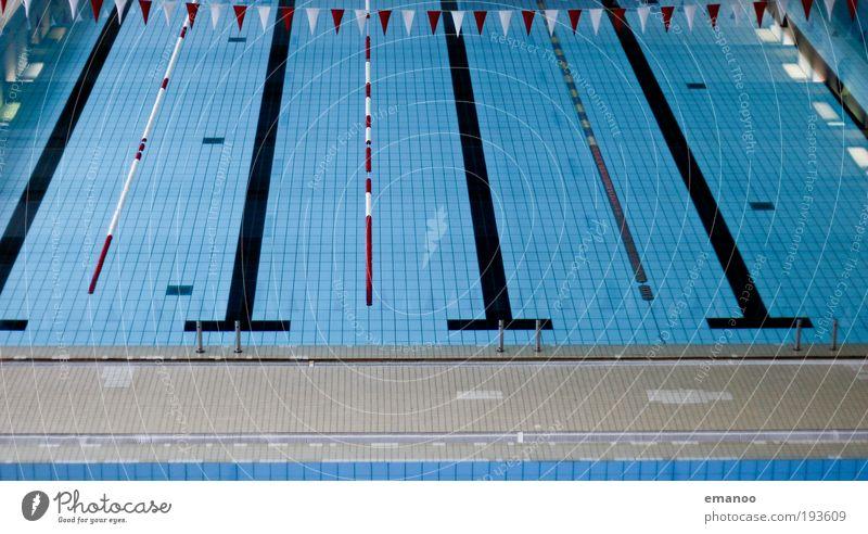 platschbecken Sport Wassersport tauchen Schwimmbad springen kalt nass Erholung Rennbahn Schwimmhalle Sprungbrett Fahne Fliesen u. Kacheln Beginn Glätte