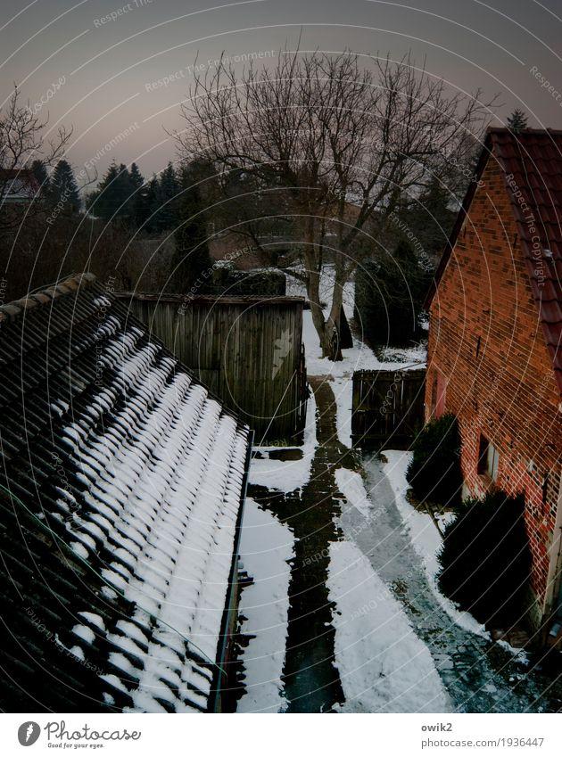 Den Hof gemacht Baum Haus ruhig Winter Fenster dunkel Wand Schnee Gebäude Mauer Garten Deutschland Fassade Eis Idylle Sträucher