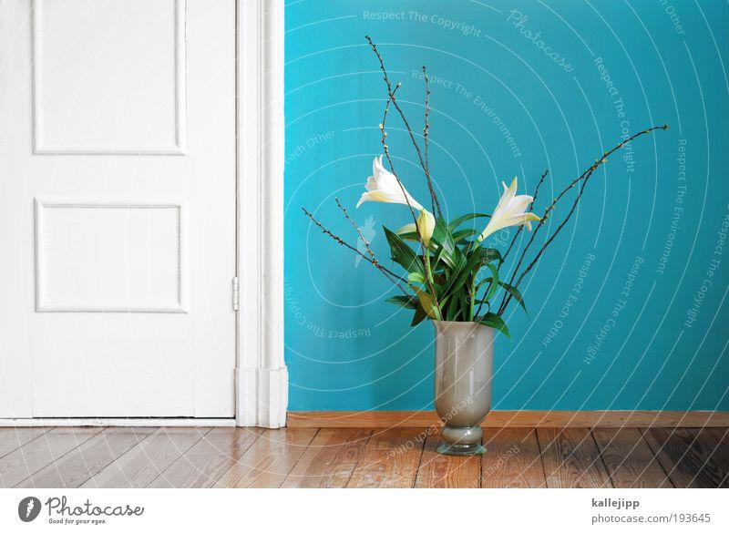 nachträglich: alles gute zum frauentag Natur schön Pflanze Blume Blatt Umwelt Holz Blüte Stil Tür Innenarchitektur Raum Wohnung elegant Dekoration & Verzierung