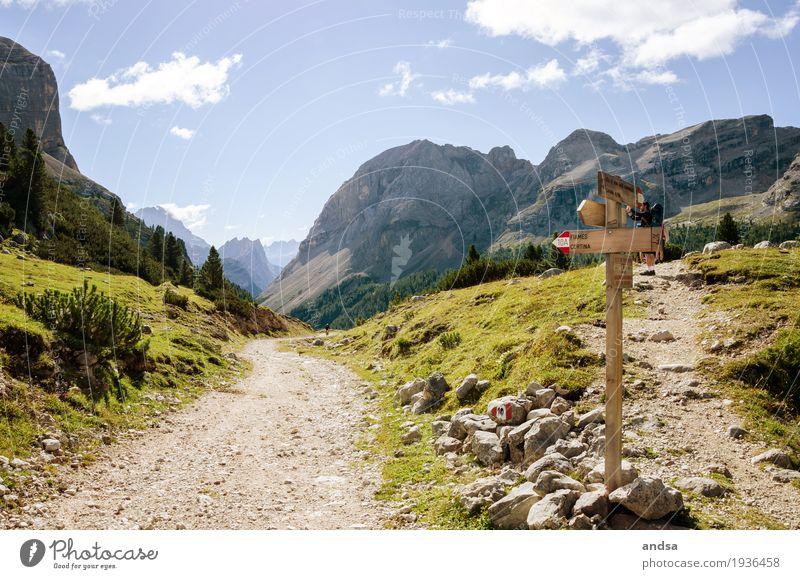 Wo geht es jetzt hin? Natur Ferien & Urlaub & Reisen Sommer Landschaft Wolken Ferne Berge u. Gebirge Umwelt Wege & Pfade Gras Freiheit Stein Felsen Horizont
