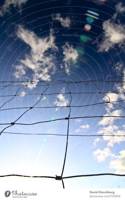 Zaun bis zu den Wolken Himmel Schönes Wetter blau weiß Draht Raster Knoten Netzwerk Barriere gesperrt Grenze Begrenzung Wolkenformation Wolkenbild leuchten