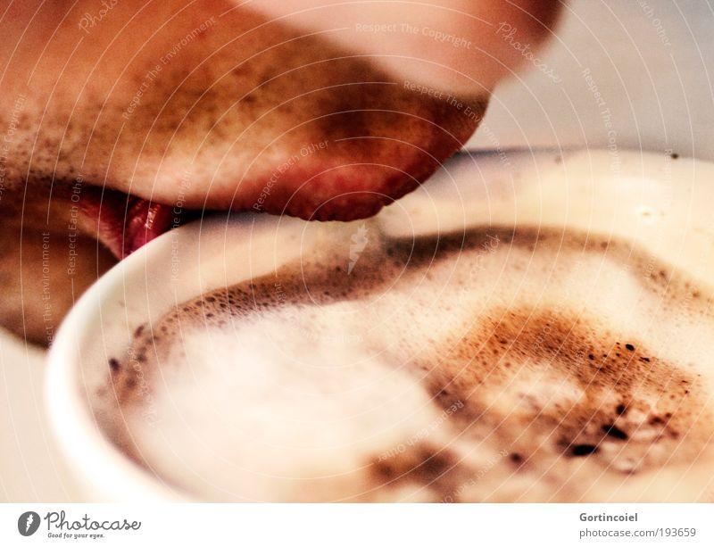 Milchschaum Mensch Ernährung Wärme Mund Nase Kaffee trinken Mann Lippen heiß Tasse genießen Versuch Getränk Kaffeetasse