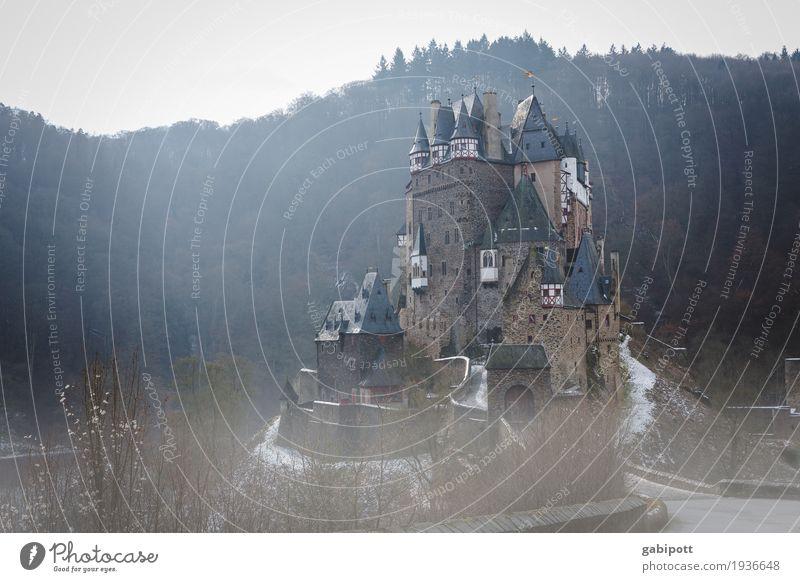 Märchenschloss Natur Landschaft Herbst Winter schlechtes Wetter Nebel Eis Frost Wald Hügel Burg oder Schloss Gebäude Sehenswürdigkeit kalt Nostalgie