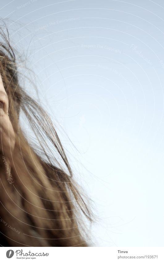 Sturm - er probt. feminin Frau Erwachsene Kopf Haare & Frisuren Himmel Wolkenloser Himmel Schönes Wetter brünett langhaarig Glück Fröhlichkeit Zufriedenheit