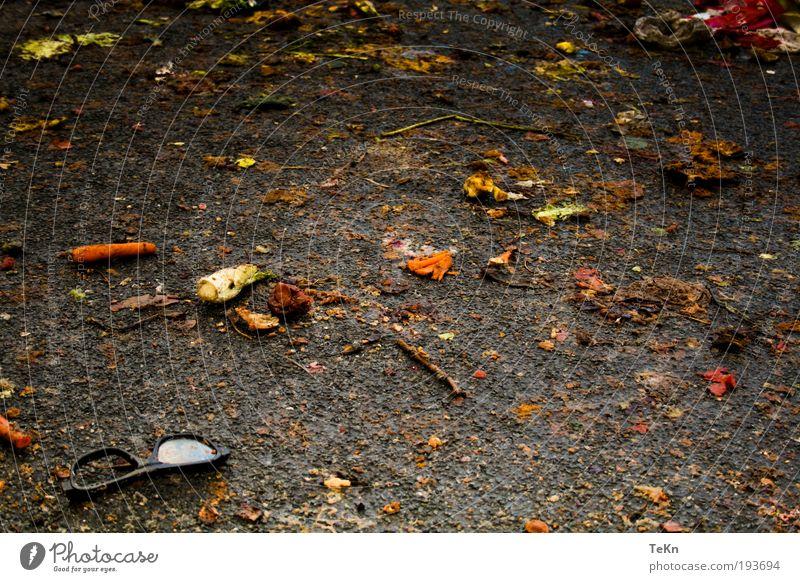 war is over.... Lebensmittel Gemüse Frucht Umwelt Natur dreckig kaputt gebrochen Fisch Möhre Schlamm matschig Brille Farbfoto Außenaufnahme Detailaufnahme