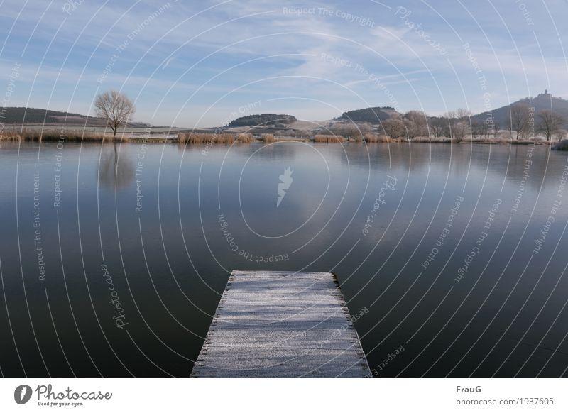 prima Klima | aber kalt... harmonisch ruhig Ausflug Winter Himmel Wolken Schönes Wetter Eis Frost Baum Sträucher Hügel Seeufer Erholung schön blau Natur