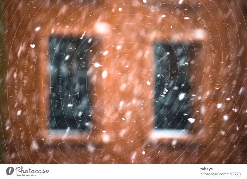 back again Winter Schnee Fenster Schneefall Eis Wohnung Wetter fliegen Sicherheit Frost Klima Häusliches Leben verstecken frieren Unwetter Geborgenheit