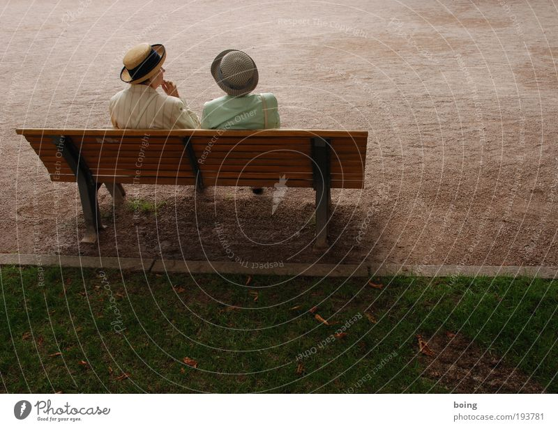 zwei Damen auf einer Bank Mensch Frau ruhig Ferne Senior Park Zusammensein Freizeit & Hobby elegant Platz Kommunizieren Bank Hut 60 und älter Lebensfreude Weiblicher Senior
