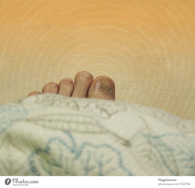 Der Tod kam über Nacht Fuß schlafen liegen Bett Wohlgefühl Geborgenheit Mensch Bettdecke Zehennagel Zehenspitze Vor hellem Hintergrund