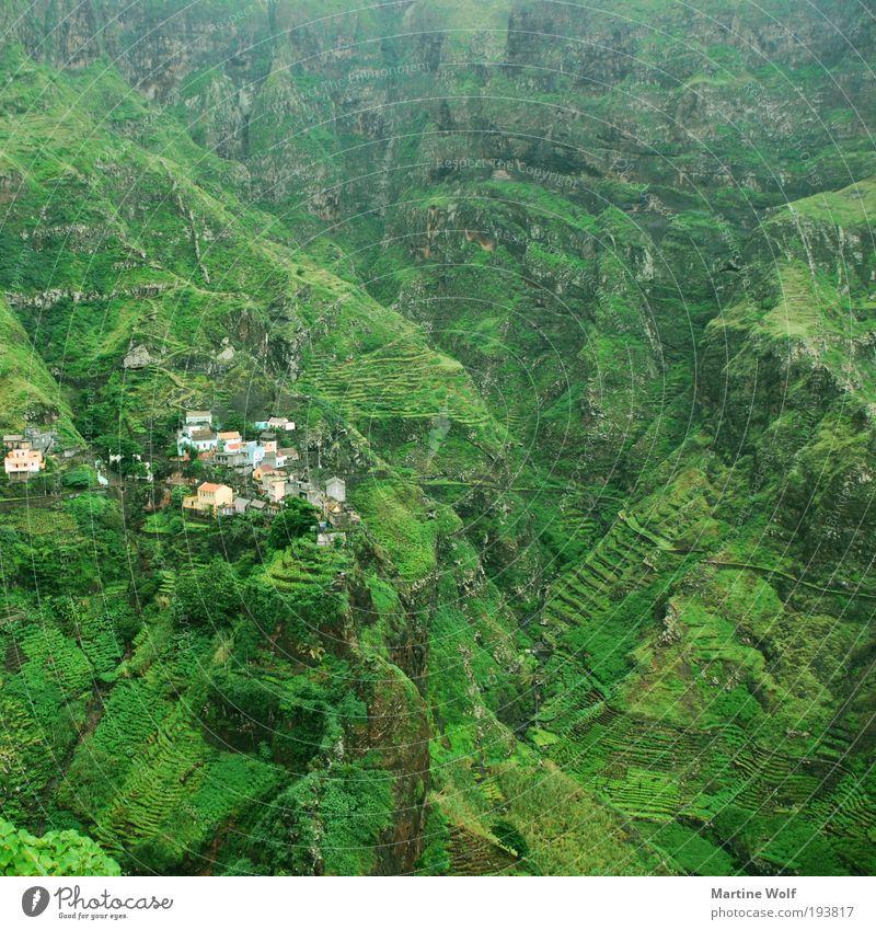 grün in grün in grün in grün Natur Ferien & Urlaub & Reisen Landschaft Ferne Berge u. Gebirge Freiheit wandern Ausflug Abenteuer Dorf Afrika Schlucht Expedition