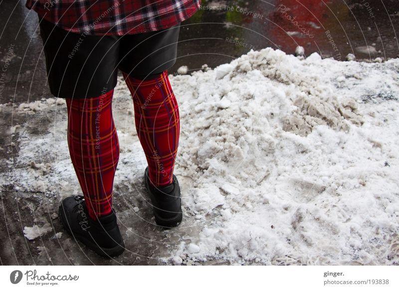 Kariert Lifestyle Stil Mann Erwachsene Beine 1 Mensch Mode Bekleidung Strumpfhose Schuhe stehen warten kariert rot schwarz Lederhose Asphalt Schneematsch nass