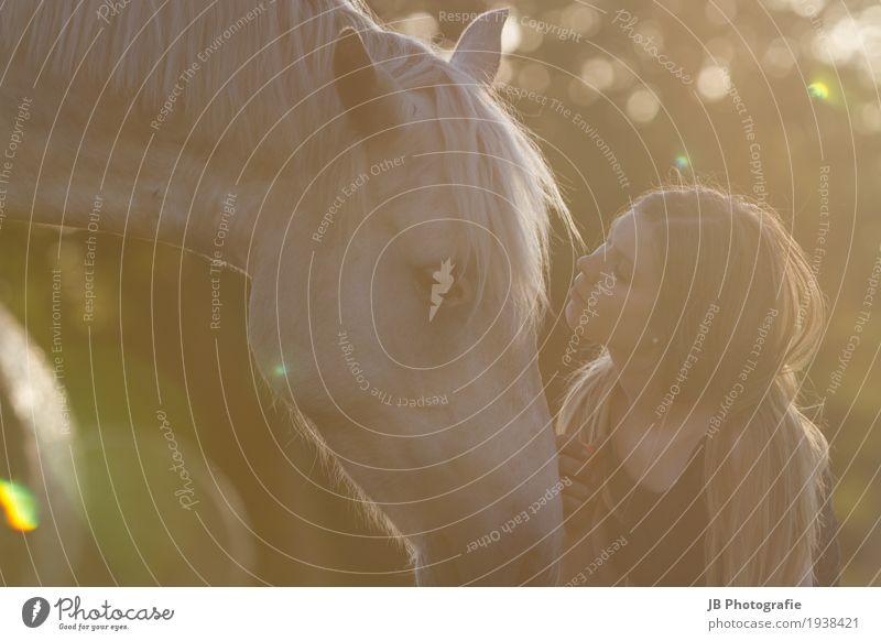 Liebesbeweis Reiten Junge Frau Jugendliche Kopf Haare & Frisuren 18-30 Jahre Erwachsene Natur Sonnenaufgang Sonnenuntergang Sommer Schönes Wetter Feld blond