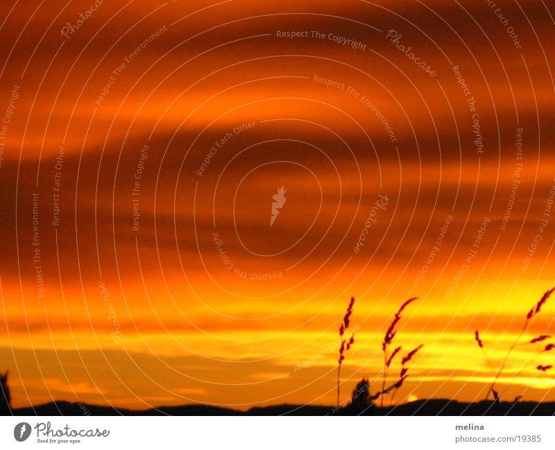 Der Untergang der Sonne Natur rot gelb