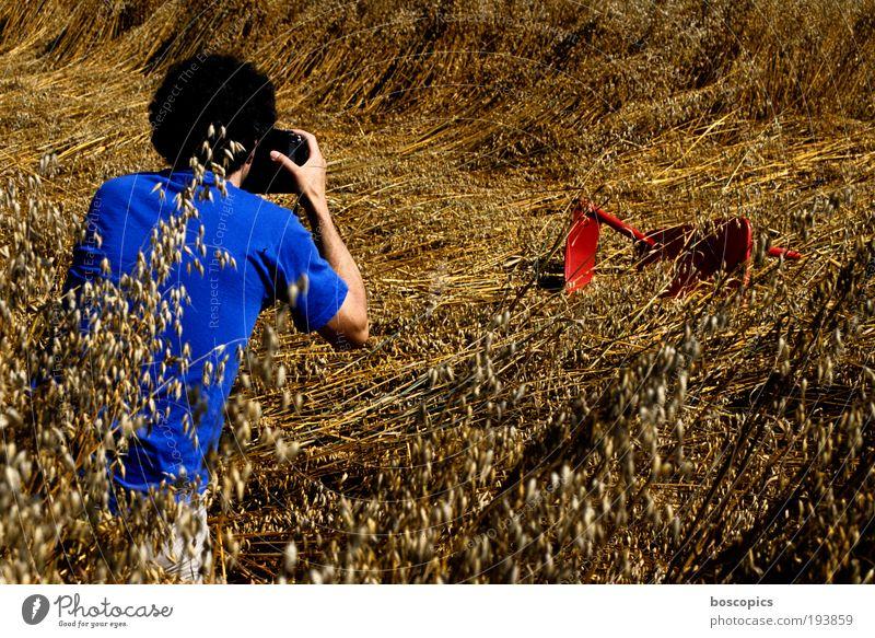 making of Mensch Mann blau rot Sommer Erwachsene Freizeit & Hobby Fotografie maskulin Stuhl Fotokamera 18-30 Jahre Kornfeld Interesse Fotografieren Jahreszeiten