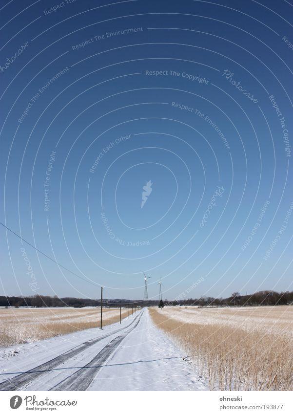 Oh, wie schön ist... Natur Himmel blau Pflanze Schnee Freiheit Glück Landschaft Eis Erde Feld Wetter Umwelt Horizont Elektrizität Frost