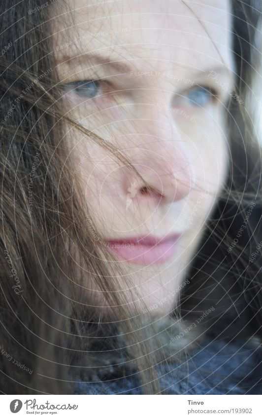 Zuversicht, Skepsis und ein wenig Rückenwind Frau schön Gesicht ruhig Auge feminin Gefühle Bewegung Haare & Frisuren Kopf Mund Zufriedenheit Stimmung Erwachsene Wind Nase