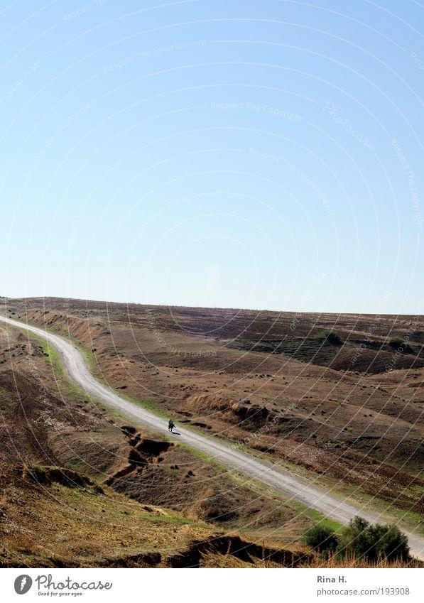 Einsamkeit Ferien & Urlaub & Reisen Abenteuer Ferne 1 Mensch Umwelt Natur Landschaft Erde Sand Wolkenloser Himmel Herbst Wärme Hügel Tunesien Verkehrswege