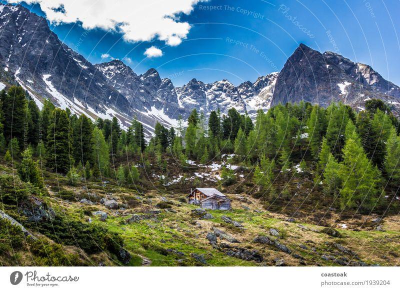 Alpenhütte am Berglisee Natur Landschaft Himmel Frühling Baum Gras Felsen Berge u. Gebirge Menschenleer Hütte Erholung kuschlig wild blau grün Einsamkeit urig