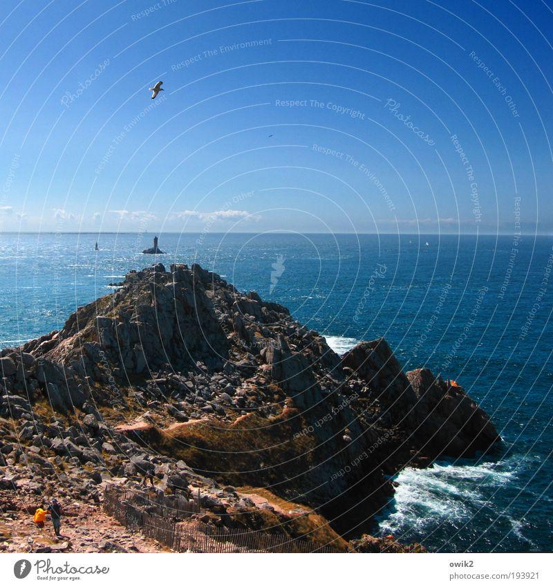 Pointe du Raz Mensch Mann Natur Meer Erwachsene Ferne Landschaft Leben Berge u. Gebirge Freiheit Paar Horizont Vogel wandern Insel Ausflug