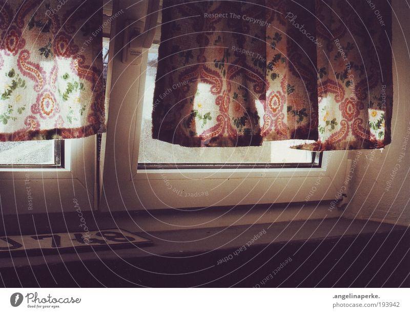 blinzelt da der sommer rein? Sonne Einsamkeit Fenster dunkel Vorhang Gardine Sonnenstrahlen Schatten Nummernschild