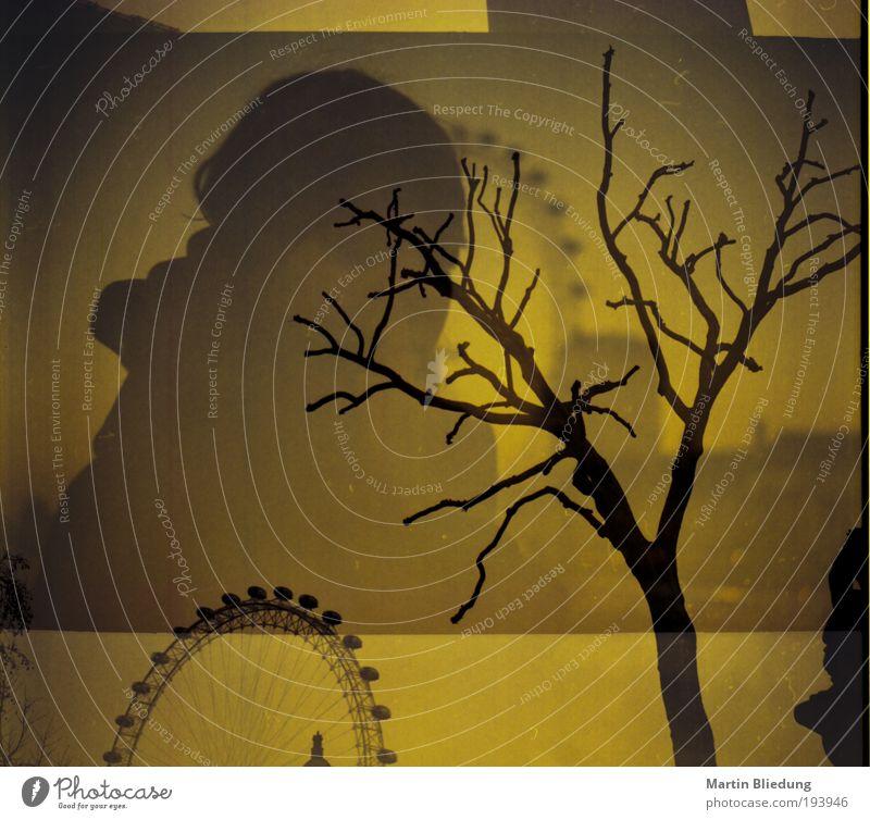 doppel#2 Mensch Baum Ferien & Urlaub & Reisen schwarz Einsamkeit gelb Herbst dunkel Leben Gefühle träumen Kunst braun warten gefährlich außergewöhnlich