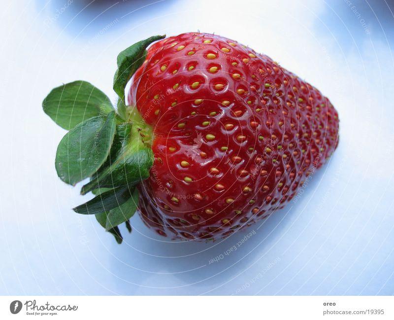 Strawberry #1 Gesundheit