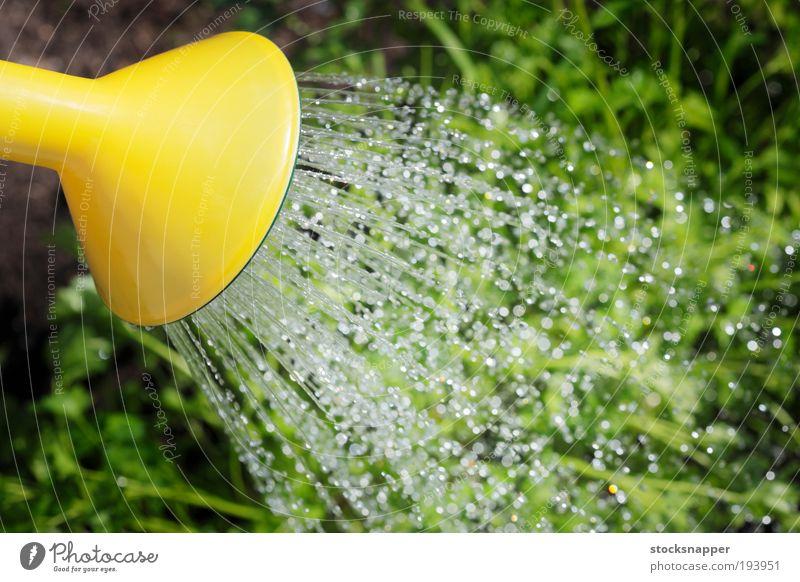 Wasser Sommer Garten Tropfen Dose Gartenarbeit liquide Gießkanne Arbeit & Erwerbstätigkeit rieseln