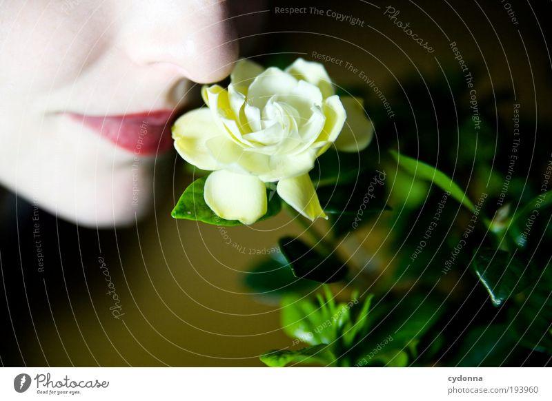 Riecht gut Mensch Frau Jugendliche schön Pflanze Blume ruhig Gesicht Erwachsene Leben Stil träumen Gesundheit elegant Haut Mund