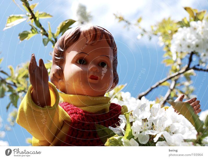 Escort Bettina Kind Mädchen Gefühle Spielen Blüte Glück Ausflug Ostern Freizeit & Hobby Klettern Spielzeug Kindheit Blühend Puppe Schönes Wetter Geborgenheit