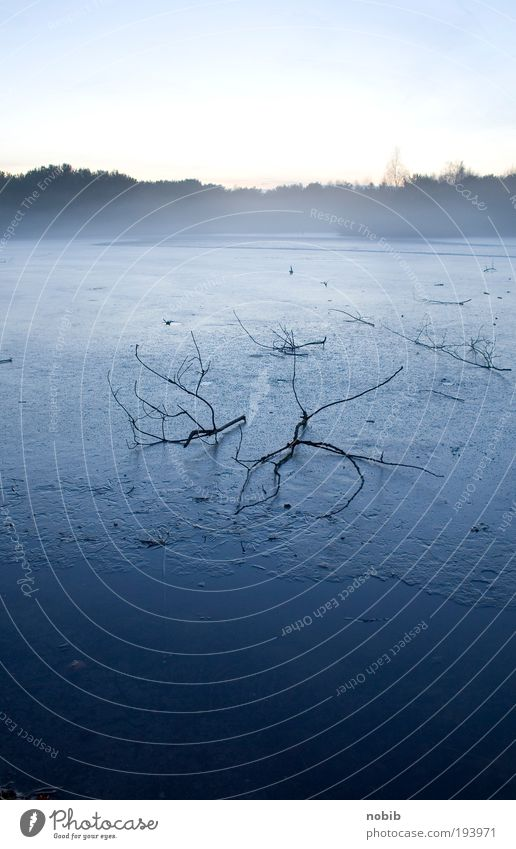 winternebel blau Wasser weiß Baum Winter ruhig Ferne Tod dunkel Landschaft kalt Berge u. Gebirge Holz grau See Horizont