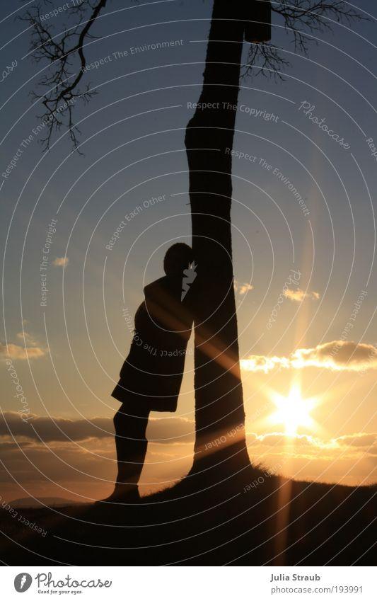 die sonne hat 6 ecken... Mensch feminin 1 Horizont Baum Hügel verrückt blau gelb gold schwarz Hoffnung träumen Fernweh anlehnen Ast Sonnenuntergang Farbfoto