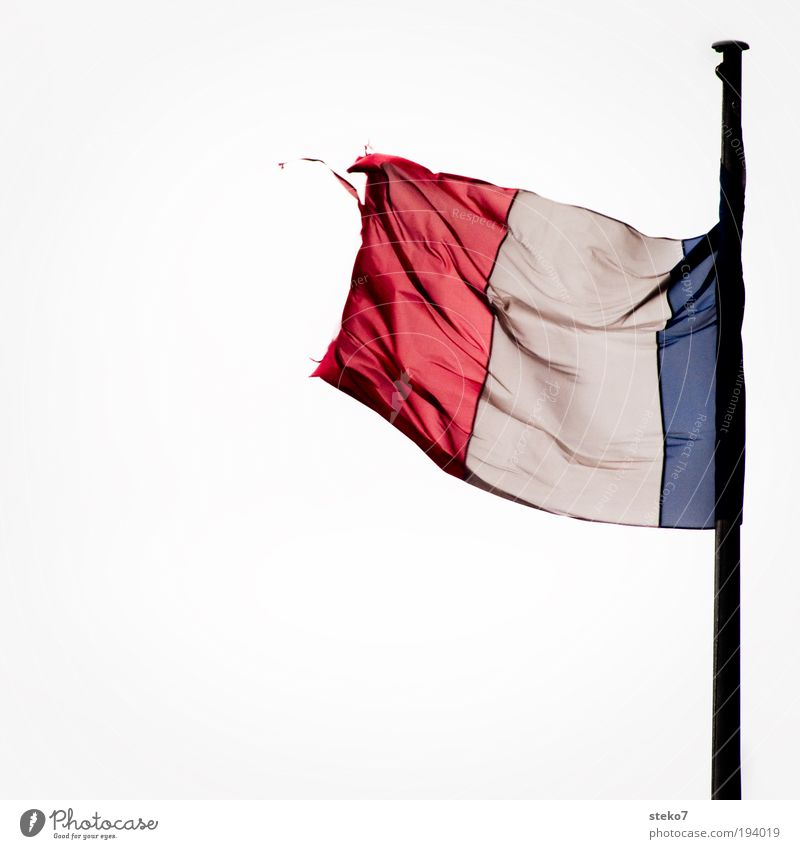Vive la Franze Wind Fahne Sturm Paris Frankreich Krise flattern Mensch Freisteller loyal Franzosen Übermut verweht Abnutzung verschlissen Tricolore