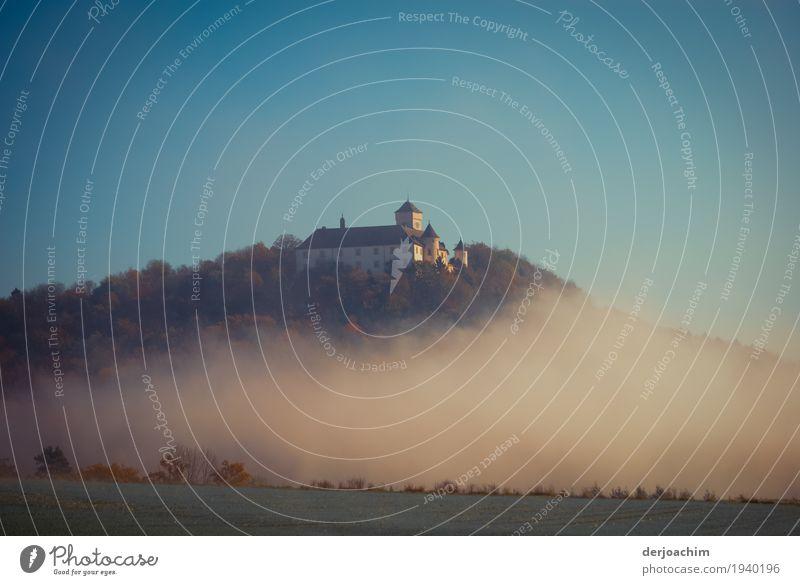 """Morgens in """" Franken """" .Burg Greifenstein im Morgen Nebel. Freude ruhig Freizeit & Hobby Ausflug Landschaft Schönes Wetter Hügel Bayern Deutschland Menschenleer"""