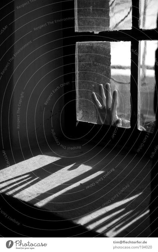 Berührende Angst Kind Hand schwarz kalt dunkel Fenster Gefühle Stein Religion & Glaube Glas dreckig Finger authentisch Sicherheit trist