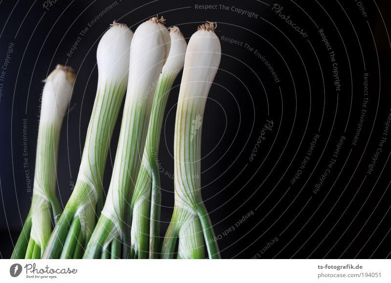 Fünf Freunde grün weiß Pflanze schwarz Ernährung Lebensmittel lustig Gesundheit mehrere Wachstum Gemüse Gesunde Ernährung Bioprodukte ökologisch Wurzel