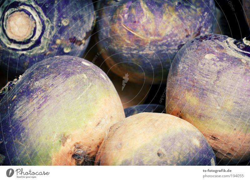 Kuschelnde Vitamine grün gelb Umwelt Gesundheit liegen Feld natürlich Lebensmittel Wachstum Ernährung rund Landwirtschaft violett Gemüse Kugel Ernte