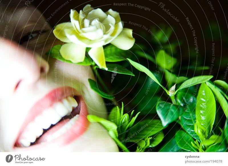 Freudestrahlend Mensch Frau Jugendliche schön Pflanze Blume Gesicht Erwachsene Leben lachen Glück Stil träumen Gesundheit Zufriedenheit