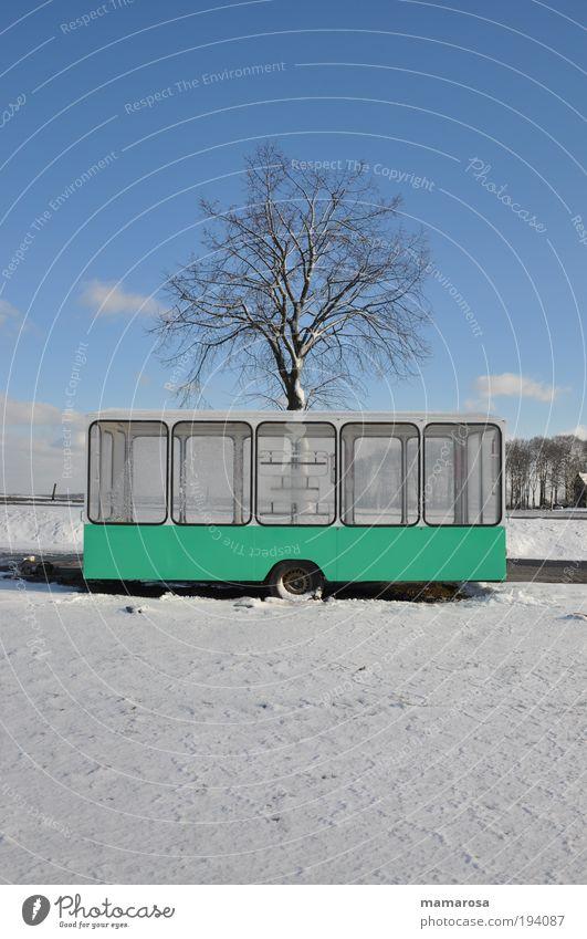 Winterschlussverkauf Schönes Wetter Eis Frost Schnee Baum Stadtrand Anhänger Verkaufswagen Armut kalt Sauberkeit trist blau weiß Hoffnung Langeweile Fernweh