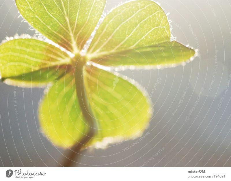 St. Paddy's Natur grün Pflanze ruhig Erholung Umwelt Wiese Frühling Glück Zeit Zufriedenheit Erfolg ästhetisch Hoffnung Symbole & Metaphern 4