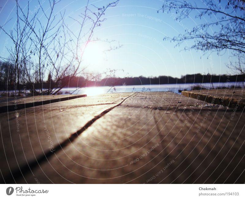 Innere Ruhe Himmel weiß Sonne blau Winter ruhig kalt Freiheit Holz See Stimmung braun frei Idylle Steg