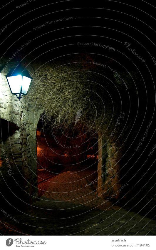 Pforte Burg oder Schloss Mauer Wand Tor Stein dunkel Mittelalter Ritterzeit Sträucher Eingang Ausgang Lampe Licht im Dunkeln historisch Pflasterweg